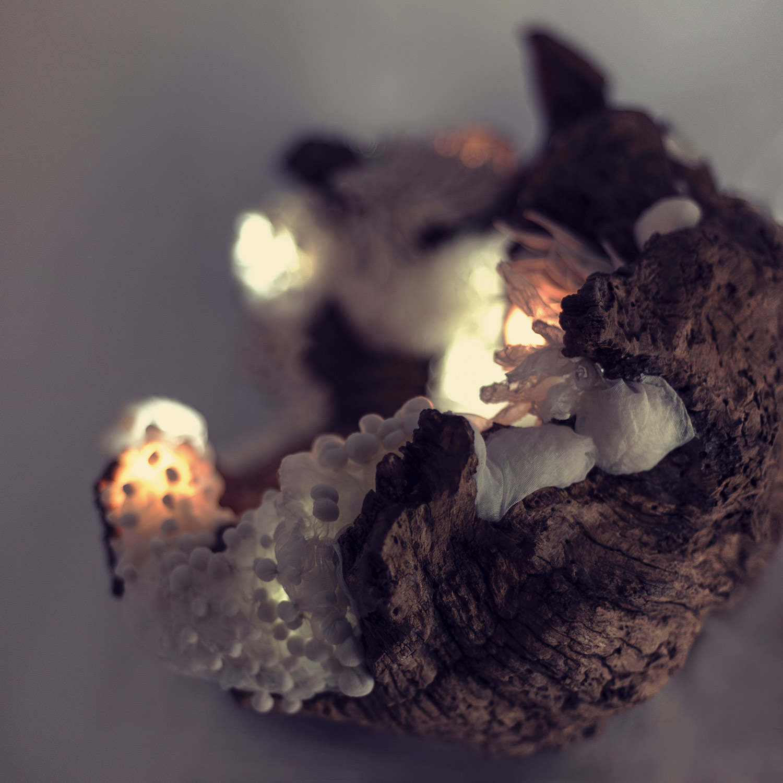 The Deep — svítící objekt Evy Spacelights Nečasové