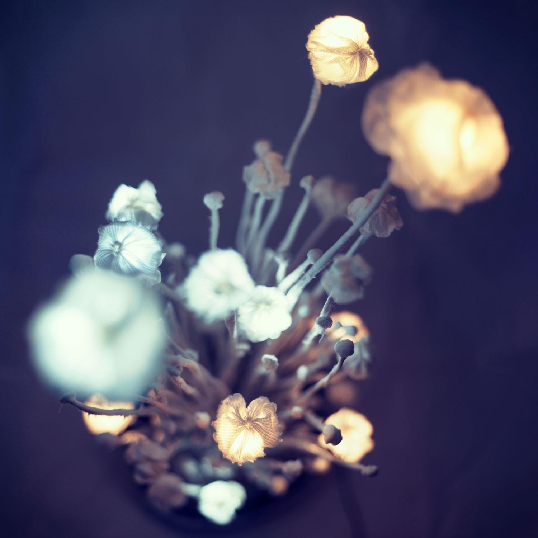 Stará pánev — svítící objekt Evy Spacelights Nečasové