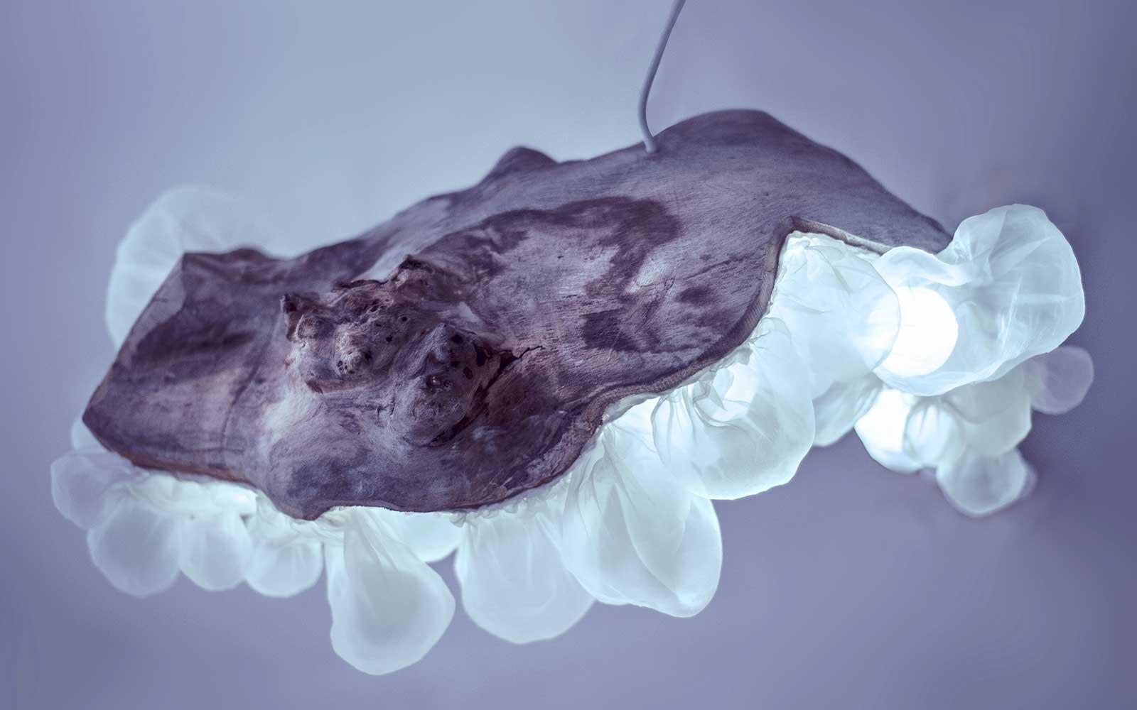 Medúza — svítící objekt Evy Spacelights Nečasové