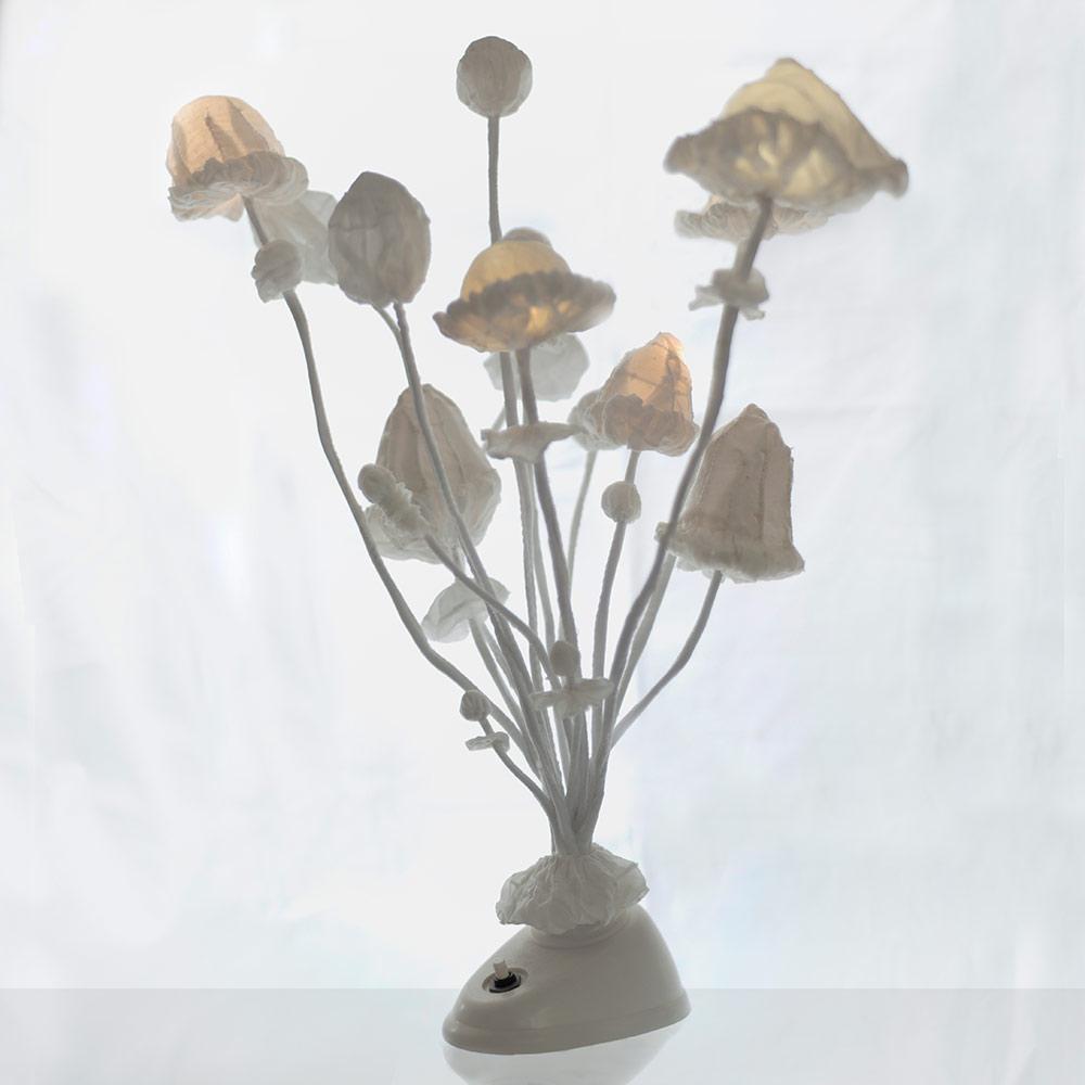 Mycelium — svítící objekt od Eva Nečasové Spacelights
