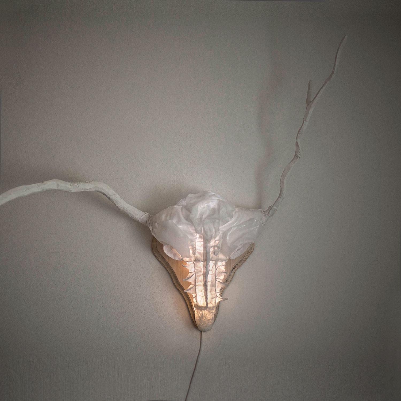 Jelínek — něžný svítící objekt od Eva Nečasové, Spacelights