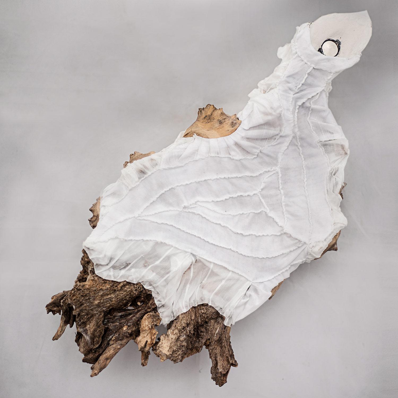 Želva ostnitá — noční světlo od Eva Nečasové, Spacelights