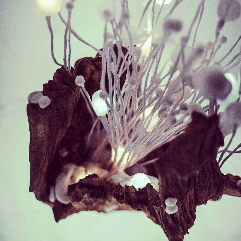 Ořešák No.2 — svítící objekt Evy Nečasové, Spacelights